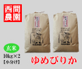 ゆめぴりか玄米20キロ小分け