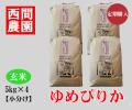 ゆめぴりか玄米5キロ×4定期配送
