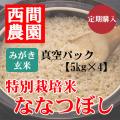 定期みがき玄米特別栽培米ななつぼし真空5kg×4
