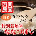 特別栽培米白米ななつぼし真空パック5kg×4