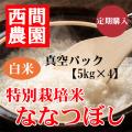 定期特別栽培米白米ななつぼし真空パック5kg×4