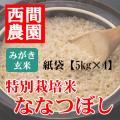 みがき玄米特別栽培米ななつぼし紙袋5kg×4