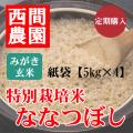 定期みがき玄米特別栽培米ななつぼし紙袋5kg×4