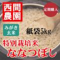 定期みがき玄米特別栽培米ななつぼし紙袋5kg