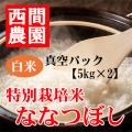 特別栽培米白米ななつぼし真空パック5kg×2