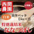 定期特別栽培米白米ななつぼし真空パック5kg×2