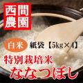 特別栽培米白米ななつぼし紙袋5kg×4