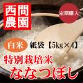 定期特別栽培米白米ななつぼし紙袋5kg×4
