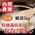 特別栽培米白米ななつぼし紙袋5kg