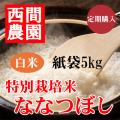 定期特別栽培米白米ななつぼし紙袋5kg
