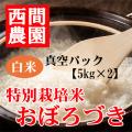 特別栽培米白米おぼろづき真空パック5kg×2
