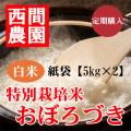 定期特別栽培米白米おぼろづき紙袋5kg×2