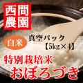 特別栽培米白米おぼろづき真空パック5kg×4