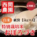 定期特別栽培米白米おぼろづき紙袋5kg×4
