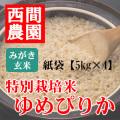 みがき玄米特別栽培米ゆめぴりか紙袋5kg×4