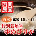 特別栽培米白米ゆめぴりか紙袋5kg×4