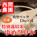 特別栽培米白米ゆめぴりか真空パック5kg×4
