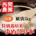 特別栽培米白米ゆめぴりか紙袋5kg