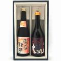 土佐の地酒 日本酒本気酒セットC 720×2本