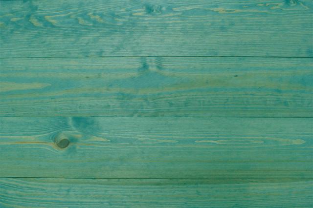 CP-V3 カラフールフレンチパイン170幅 (ピーコックグリーン)