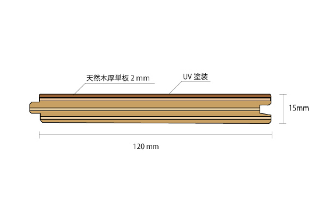 ナラ多層複合断面図