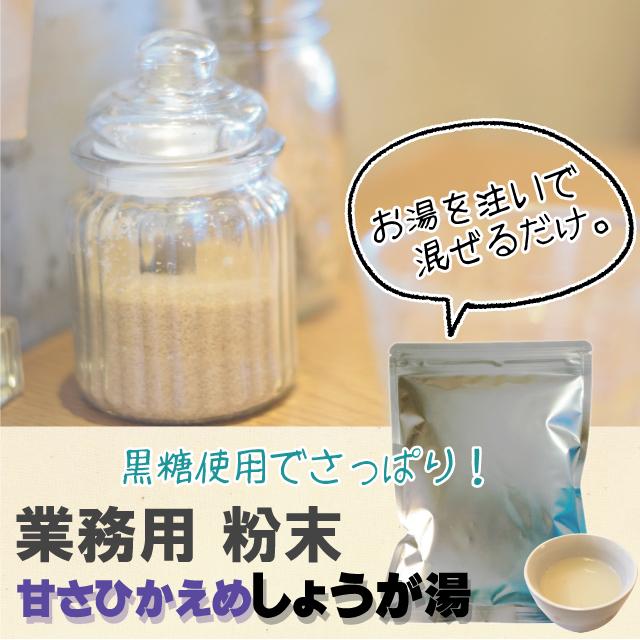 甘さひかえめしょうが湯  業務用500g 【8337】【12】