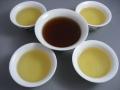 送料無料!生茶(4種)・熟茶(1種)×10g 飲み比べセット