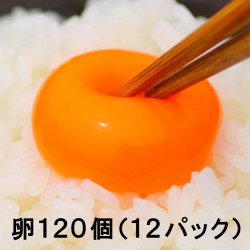 【送料無料】池田なません 12パックセット