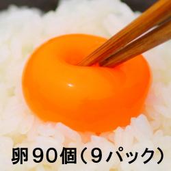 【送料無料】池田なません 9パックセット