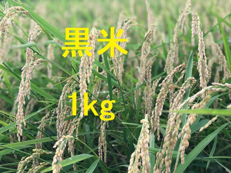 黒米 1kg