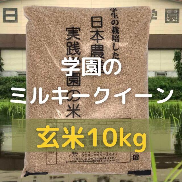 学生の作ったミルキークイーン(玄米)(10kg)令和3年産新米
