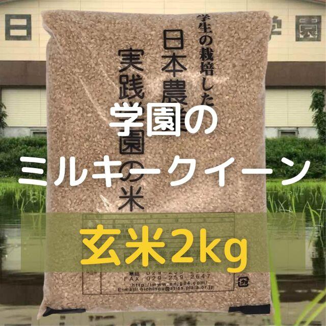 学生の作ったミルキークイーン(玄米)(2kg)令和3年産新米