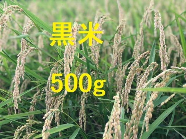 黒米 500g
