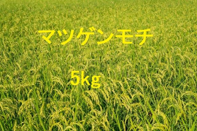 マツゲンモチ 5kg