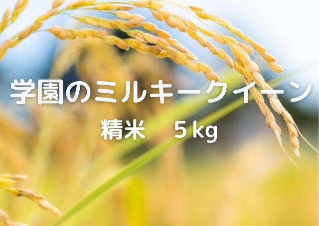 学生の作ったミルキークイーン(無洗米・白米・分搗米)(5kg) 令和3年産新米
