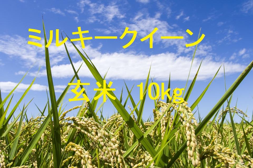 ミルキークイーン 玄米 10kg