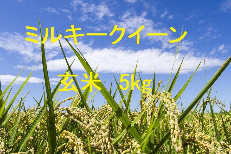 ミルキークイーン 玄米 5kg