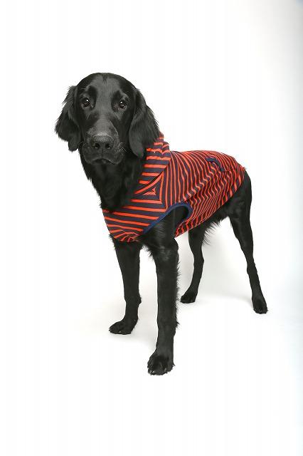 ボーダーTシャツ・大型犬サイズ