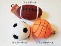 小型犬,おもちゃ,ボール
