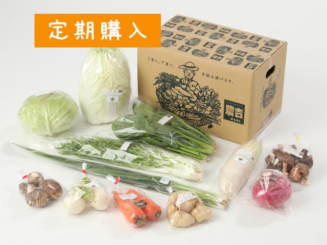 【定期便】家族で野菜セット