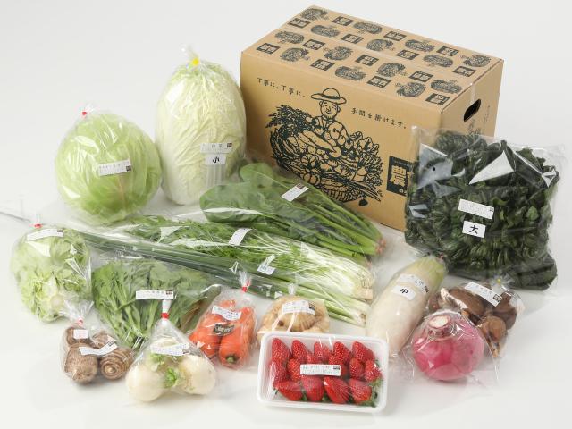 大きな家族の野菜セット