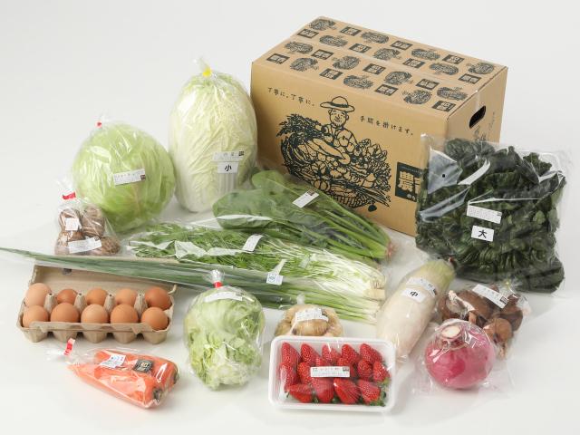 大きな家族の野菜セット(平飼い卵入り)