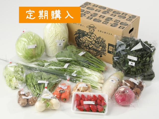 【定期便】大きな家族の野菜セット