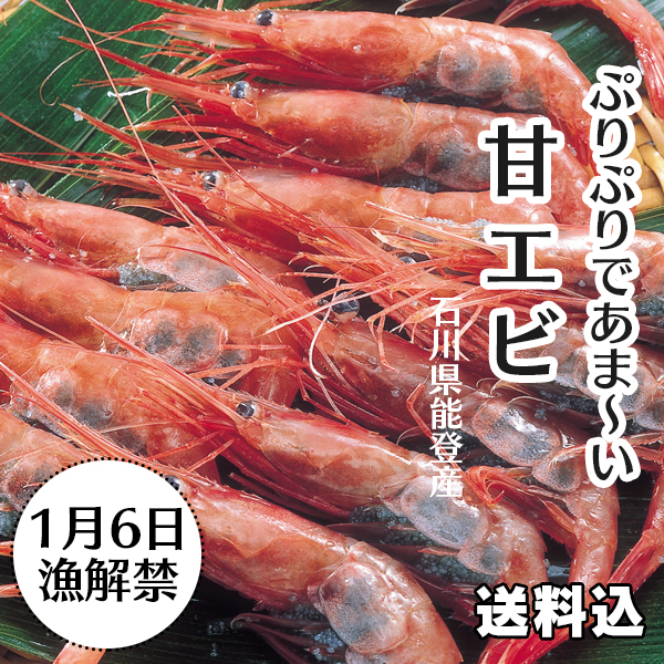 石川県能登産の甘エビ