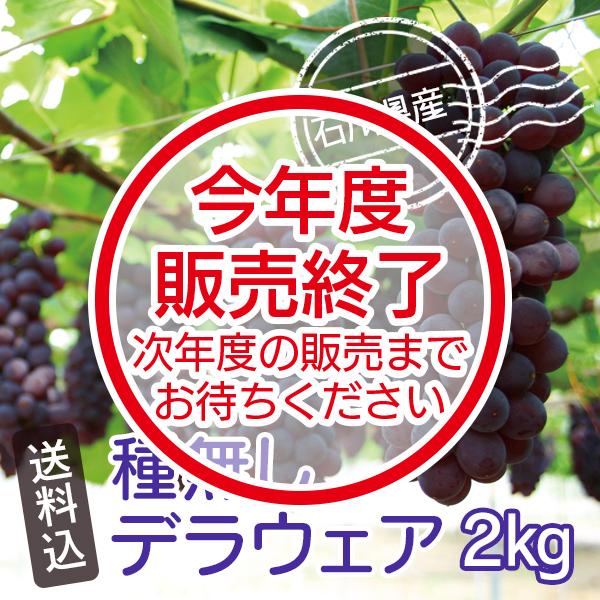 種無しデラウェア(2kg)石川県産【送料込】