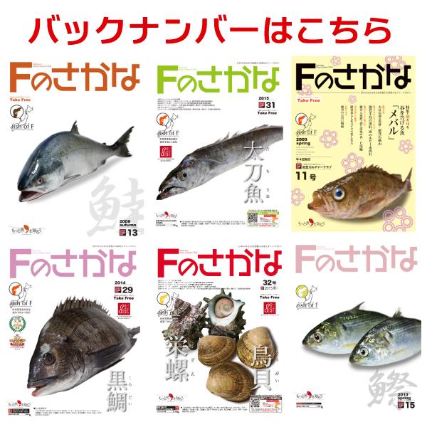 能登からさかな文化と食文化を発信する冊子『Fのさかな』バックナンバー【送料込】