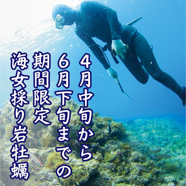 海女採れ天然岩牡蠣「珠姫」・期間限定