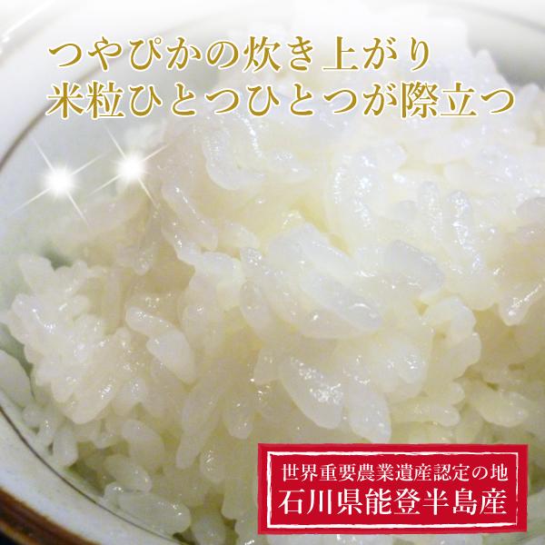 秀雄さんのミルキークイーン5kg【石川県能登のうまいお米】