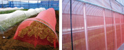 防虫ネット「サンサンネット e−レッド」 0.8ミリ目 1.5m幅