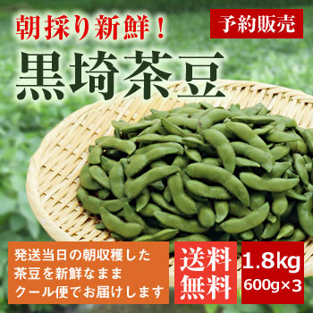 朝採り黒埼茶豆1.8kg(600g×3袋)